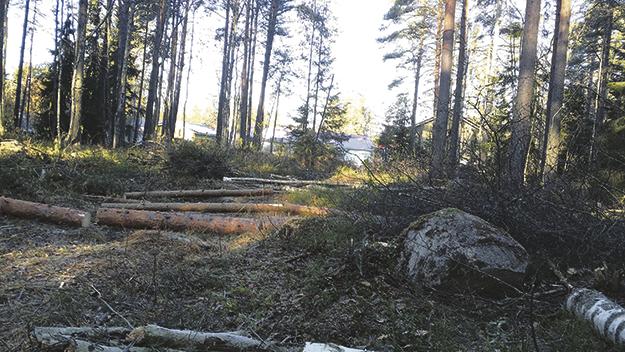 Tampere tonttihaku 2018